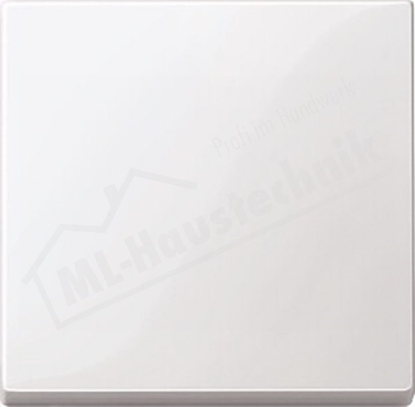 Merten 432119 Wippe polarweiss System M Thermoplast brillant