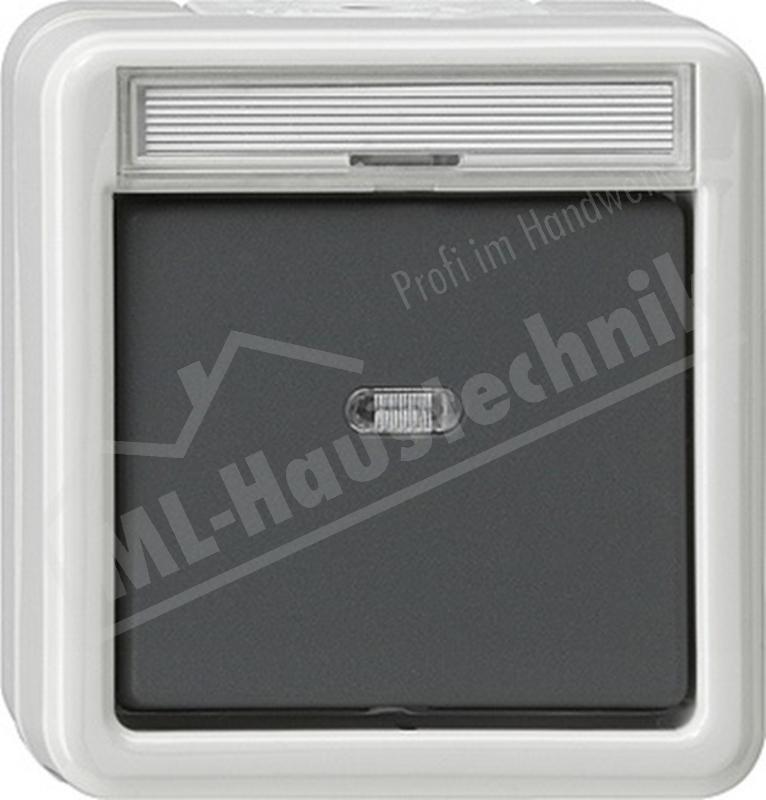 Gira 011230 Kontroll-Ausschalter 2-polig grau WG AP IP44