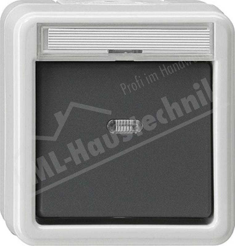 Gira 011630 Kontrollschalter grau WG AP IP44 mit Schriftfeld