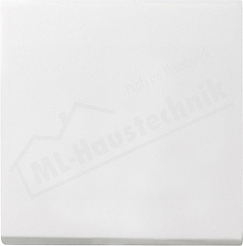 Gira 029627 Wippe reinweiss System 55